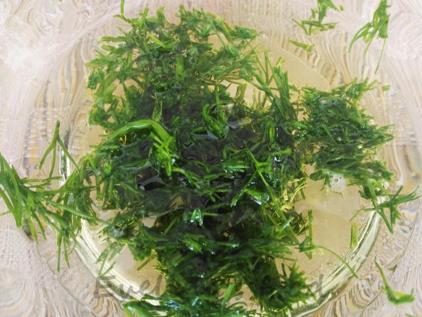 salata-cu-somon-si-mozarella-4