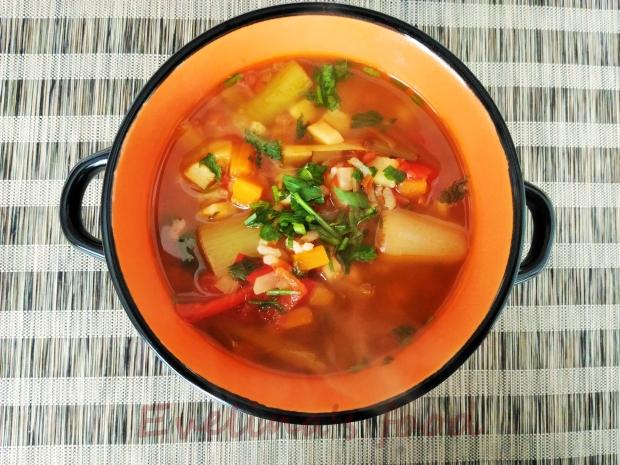 supa-de-praz-cu-orez-10